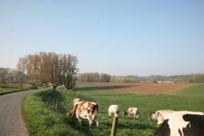boerderij2118