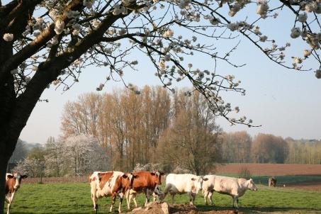 boerderij2122