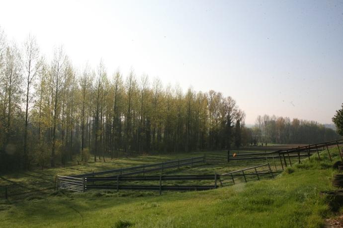 boerderij214